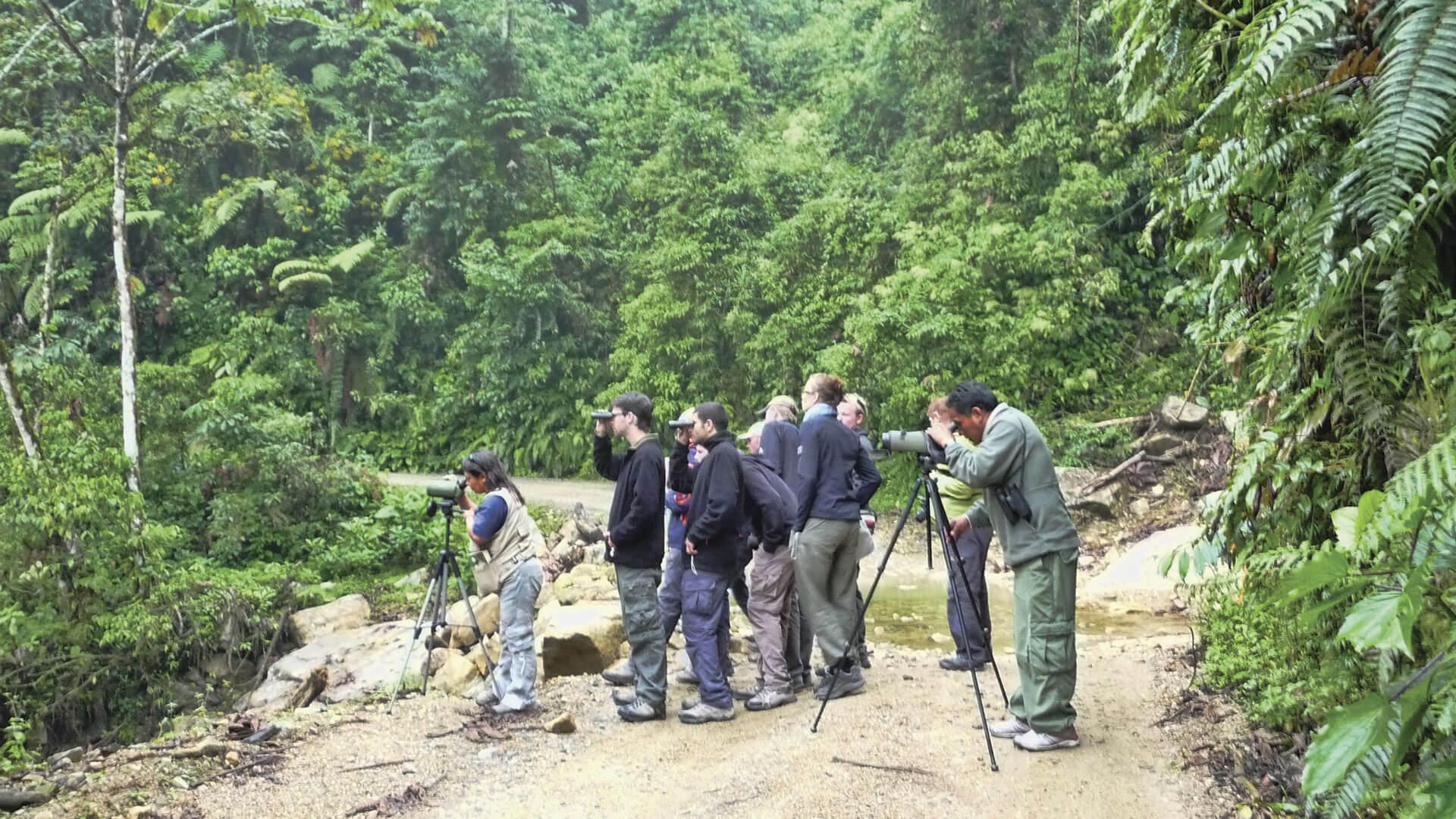 tour-de-avistamiento-expediciones-vilca