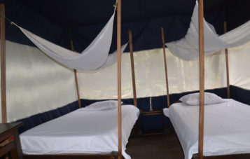 campamento-otorongo-zona-reservada
