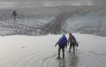 cocha-otorongo-epoca-de-lluvia-zona-reservada