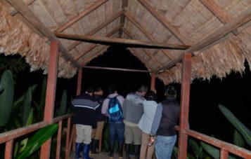 espigon-cocha-otorongo-zona-reservada