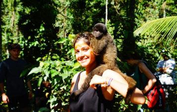 tambopata-monos