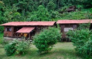 amazon-tour-zona-cultural-albergue-paititi